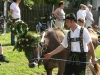 Almabtrieb Farchant 2011, Bild 25