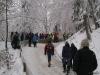 Hornschlittenrennen 2012, Bild 01