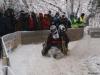 Hornschlittenrennen 2012, Bild 04