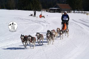 Internationales Schlittenhunderennen Wallgau, Bild 01
